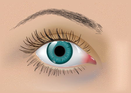 skin color: Vector illustration of perfect womans eye with eyebrow