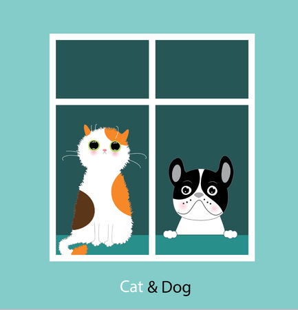 Funny dog and cat 스톡 콘텐츠 - 98763349