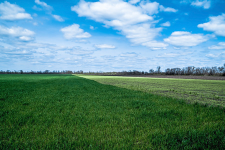Blue sky with clouds over green and black fields photo