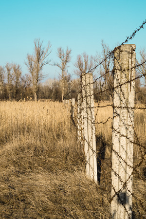 iron curtain: Barbed wire fence in a field
