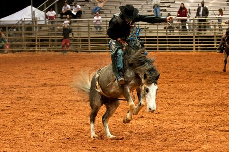 bucking horse: Cowboy riding a horse during a rodeo competition at night.