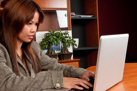 Young Business Woman working on her laptop at office. Stock Photo - 4768042