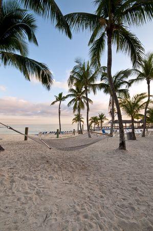 Hammock in the Beach photo