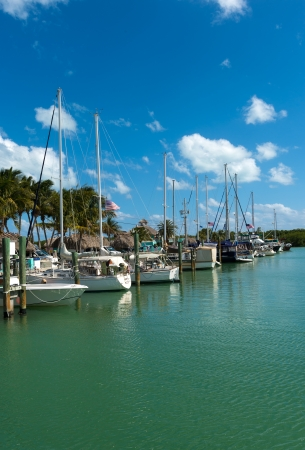 Sailboats in a marina in the Florida Keys