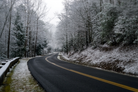 great smoky mountains national park: Snowy road during winter at the Great Smoky Mountains National Park