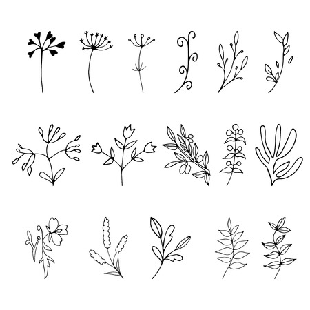 Set of hand drawn elements with floral elements and leaves, design  for invitations, greeting cards, quotes, blogs, posters.. Vector illustration.