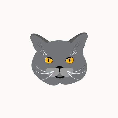 Cat breed British Shorthair face. Vector illustration. Vector Illustration
