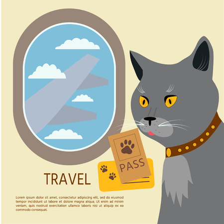 Cat  British Shorthair flies by plane whith pasport and ticket.  Vector illustration.