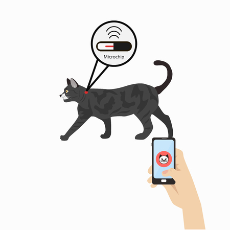 Pet services - microchipping. Icon dogs with microchip pill inside the body and information about owner tagged with a microchip implant. Vector Illustration