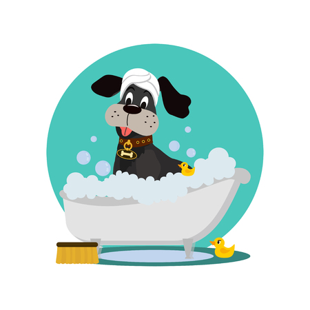 Cute dog in a bathtub not so amused about that , with yellow plastic ducks and towel on head, covered in foam, vector illustration isolated on white background.