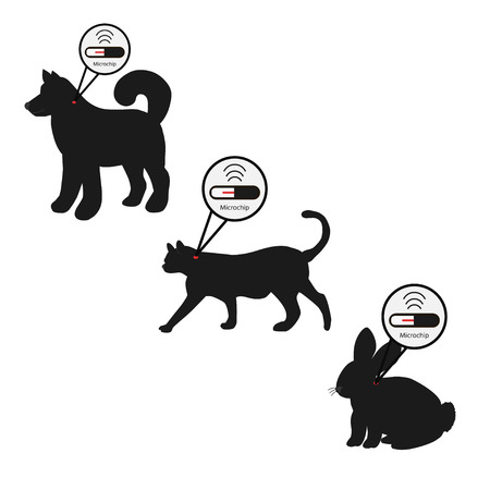 Pet services - microchipping. Icon dog, cat and rabbit with microchip pill inside the body and information about owner tagged with a microchip implant. Vetores