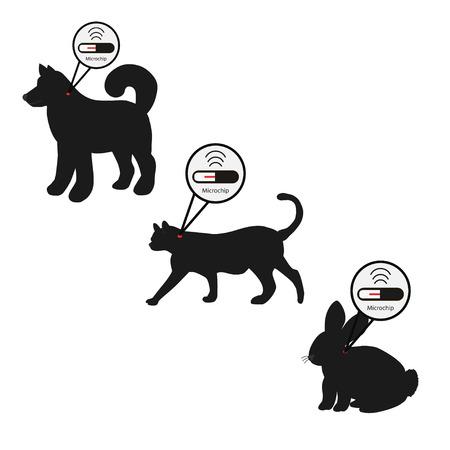 Servizi per animali domestici - microchip. Icona cane, gatto e coniglio con pillola di microchip all'interno del corpo e informazioni sul proprietario etichettato con un impianto di microchip. Vettoriali