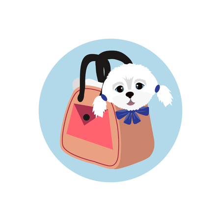 Cute lap dog in the woman's pink bag. Vector illustration.