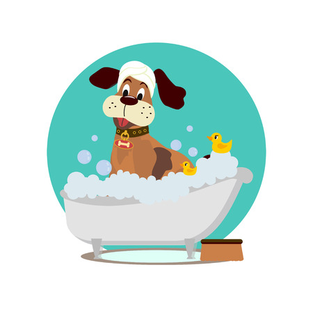 Dog grooming. Cute dog taking a bath. Vector cartoon style illustration