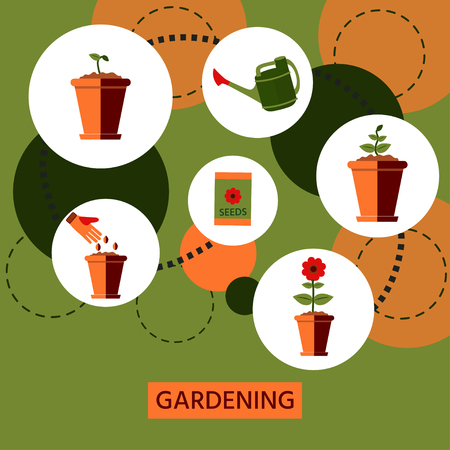 Stages of growth of a flower from seed. Watering plants in a pot. Flat style, vector illustration