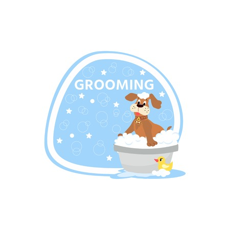 Dog grooming concept.  Cartoon cute dog character  a soapy bath with rubber duck.