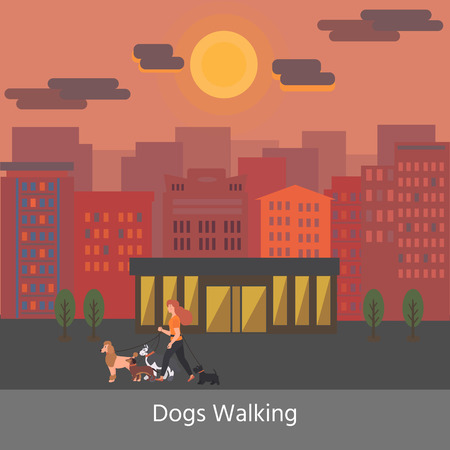 Dog walking service. Banner. Young Woman walking with a dogs different breeds: terrier, poodle, dachshund, husky. Vector Illustration