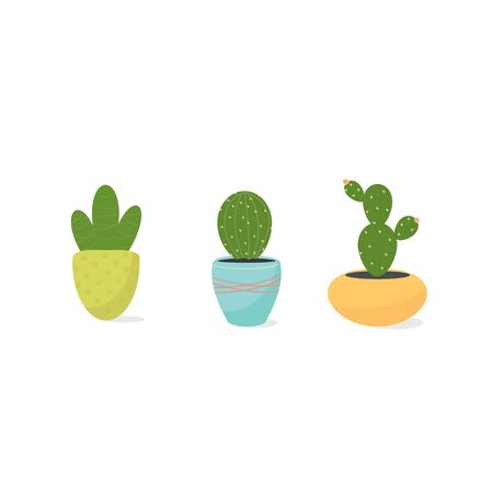 Cactus in Potted. Home garden and hobby concept. Vector illustration of potted houseplant for card, banner, poster