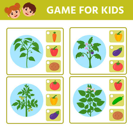 Education logic game for preschool kids. Kids activity sheet. Find the matching plant and vegetable. Vegetables: potatoes, tomato, corn, eggplant, pepper, cucumber, green peas. Children funny riddle entertainment