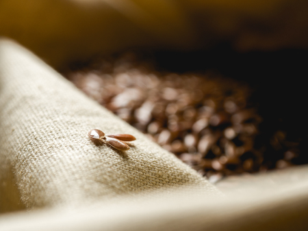 flax seeds on linen cloth 写真素材