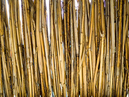 Natural straw closeup texture background 스톡 콘텐츠