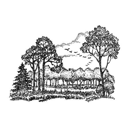 Hand gezeichnet Vektor-Illustration mit dem Herbstlandschaft und die Vögel nach Süden zu verlassen.
