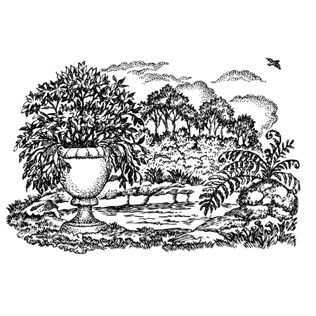 garden pond: Hand drawn vector illustration. Garden with a pond, a vase with the flowers and the flying bird. Illustration