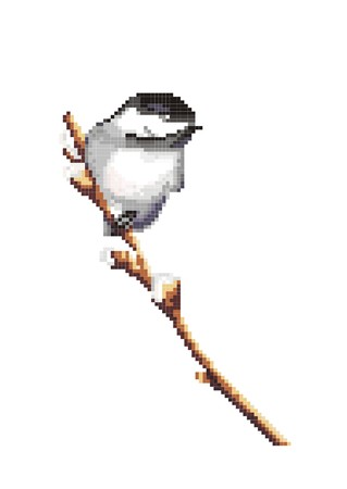 Bird on a branch on the white background Vector