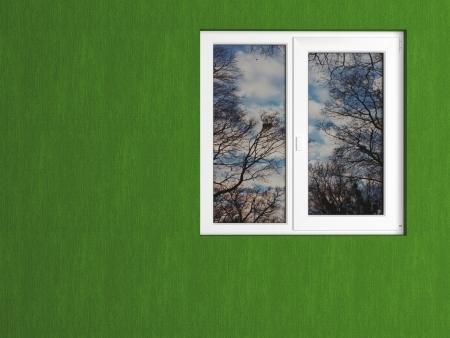 Parede verde e branco janela refletindo a natureza. Casa exterior. Imagens