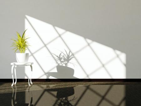 Empty inter design, white wall, dark floor and plant. Stock Photo - 14017029