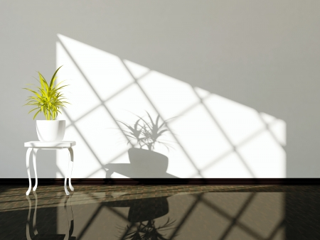 Empty interior design, white wall, dark floor and plant. Stock Photo - 14017029
