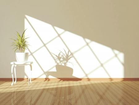 Empty interior design, white wall, light floor and plant. Stock Photo - 14017035