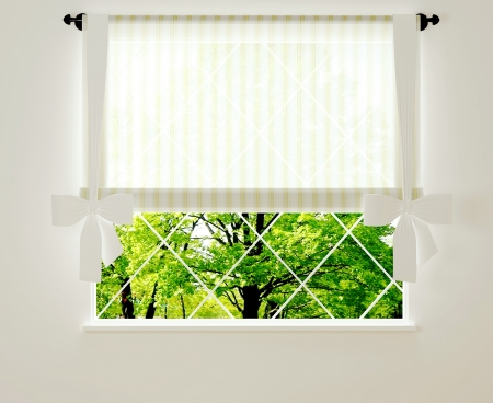Window in a bright white room with view. Stock Photo - 14017031