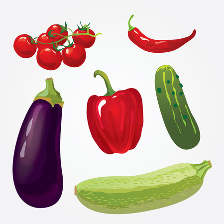 Collection of isolated ripe vegetables include zucchini, eggplant, peppers, chili, tomato and cucumber Vector