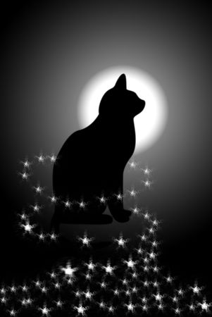 The Black cat on background of the moon. The Cat in mystic phosphorescence.