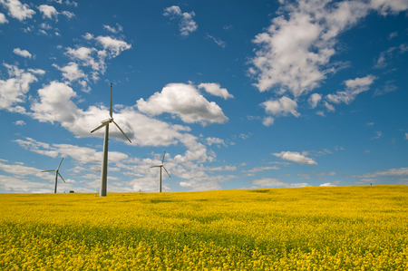 Ecological wind farm on a background of blue sky