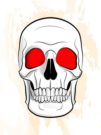 illustration of a human skull on a textured background 向量圖像