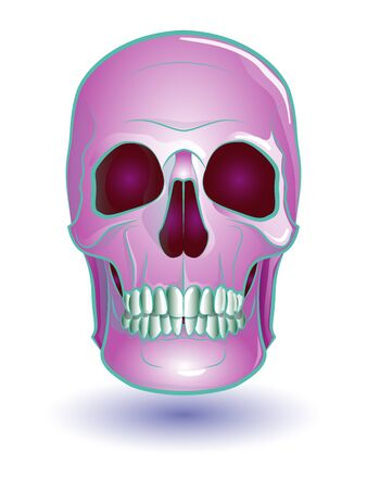 human skull in pink on white background