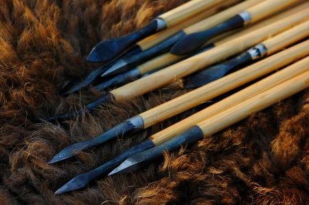 reenact: Tradicionales flechas de madera de un bisonte ocultar