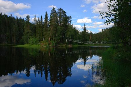 Bridge over the water in the forest photo