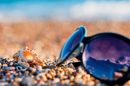 Sunglasses and shells lie on the shingle beach sea photo