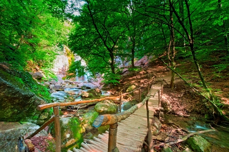 Wooden bridge at the waterfall Jur-Jur. Ukraine. Crimea.