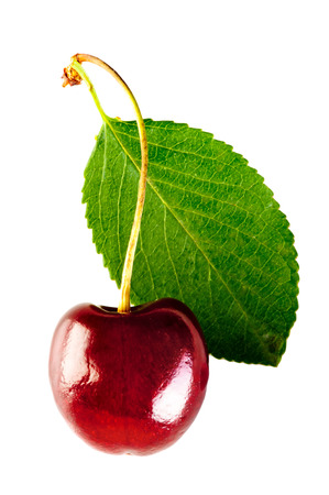 shiny ripe cherry and leaf  photo