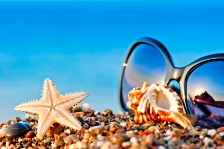 sunglasses and marine life on the beach photo