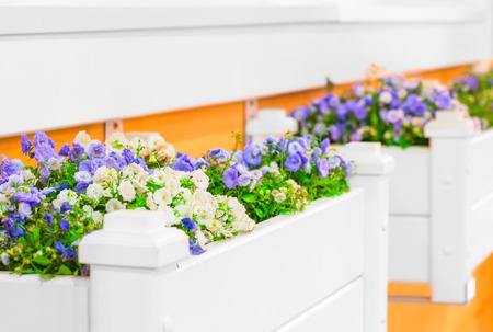 jardines flores: jardines de flores blancas con hermosas flores en el alf�izar de la ventana