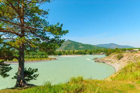 turbid: turbid water of the mountain river Katun in Altay edge