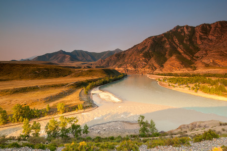 siberian pine: merger of the two great rivers of Altai - Chuya and Katun