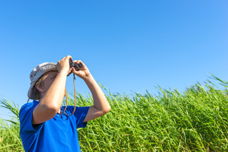 man looks for through the reeds with binoculars photo