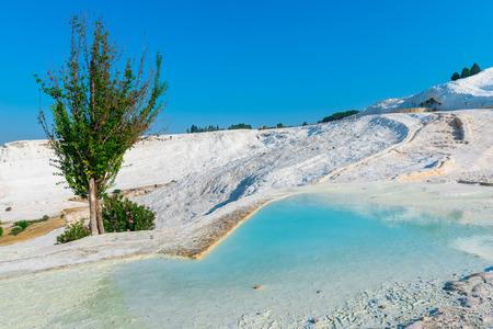 carbonates: beautiful turquoise water  travertines at Pamukkale