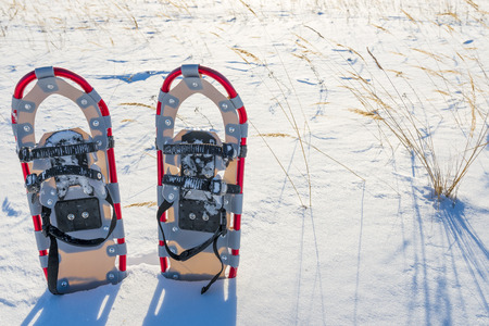 snowshoes: a pair of snowshoes in snow field